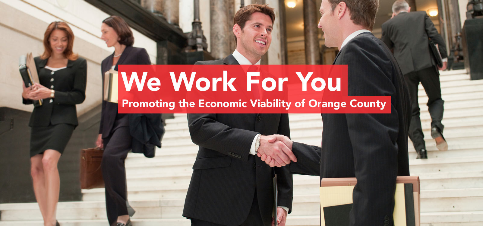 Promoting the Economic Viability of Orange County